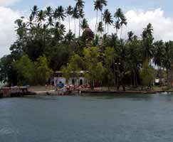 Port Blair Travel Package